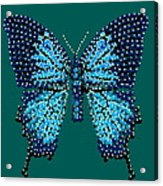 Blue Butterfly Green Background Acrylic Print