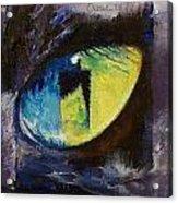 Blue Cat Eye Acrylic Print
