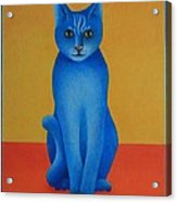 Blue Cat Acrylic Print