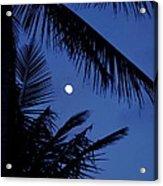 Blue Dawn Moon Acrylic Print