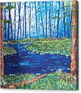 Blue Day Stream Acrylic Print