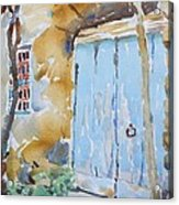 Blue Door Sorrento Acrylic Print
