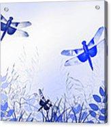 Blue Dragonfly Art Acrylic Print