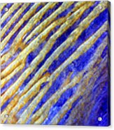 Blue Dunes Acrylic Print by Adam Romanowicz