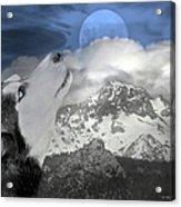 Blue Eyed And Moon Acrylic Print