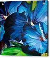 Blue Fairies  Acrylic Print