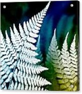 Blue Fern Leaf Art Acrylic Print