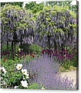 Blue Flowergarden With Wisteria Acrylic Print