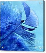 Blue Gem Acrylic Print