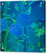 Blue Green Impression Acrylic Print