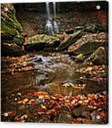 Blue Hen Falls In Autumn Acrylic Print