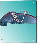 Blue Heron Flight Acrylic Print