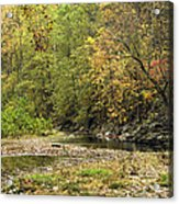 Blue Hole Streambed Acrylic Print