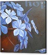 Blue Hope Acrylic Print