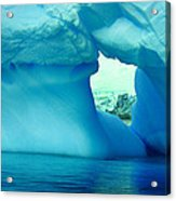 Blue Iceberg Antarctica Acrylic Print