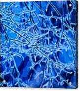Blue Imbue 2 Acrylic Print