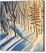 Blue Jay Winter Acrylic Print