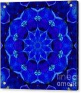 Blue Kaleidoscope  Acrylic Print by Annette Allman