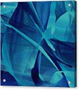 Blue Linear Mesh No 1 Acrylic Print