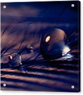 Blue Mood Acrylic Print