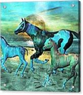 Blue Ocean Horses Acrylic Print by Betsy Knapp