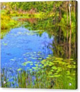 Blue Pond And Water Lilies Acrylic Print