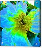 Blue Poppy Neon Acrylic Print