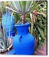 Blue Pot Acrylic Print