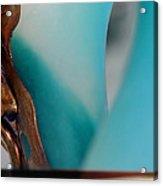 Blue Reflection Series II Acrylic Print by Judy Paleologos