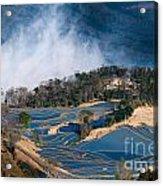 Blue Rice Terrace Acrylic Print
