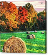 Blue Ridge - Fall Colors Autumn Colorful Trees And Hay Bales II Acrylic Print