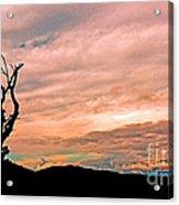 Blue Ridge Mountain Sunrise Panoramic  Acrylic Print