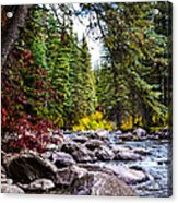 Blue River Acrylic Print by Sergio Aguayo