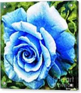 Blue Rose With Brushstrokes Acrylic Print