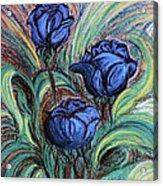 Blue Roses Acrylic Print