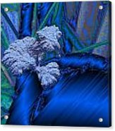 Blue Satin And Mushroom Acrylic Print