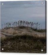Blue Skies At The Dunes Acrylic Print