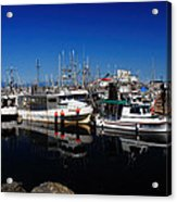 Blue Skies Over French Creek Acrylic Print