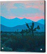 Blue Sky Cacti Sunset Acrylic Print