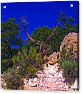 Blue Sky Over The Canyon Acrylic Print