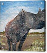 Blue Sky Rhino Acrylic Print