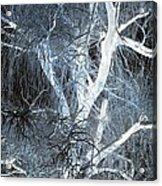 Blue Snow Acrylic Print