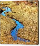 Blue Stream Acrylic Print