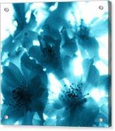 Blue Sunlight Fusion Acrylic Print