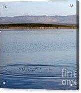 Blue Undulations Acrylic Print
