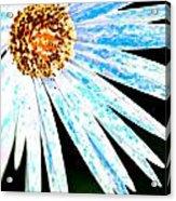 Blue Vexel Flower Acrylic Print