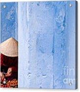 Blue Wall Hawker 01 Acrylic Print