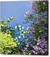 Blue Wall With Flowers Acrylic Print by Elena Elisseeva