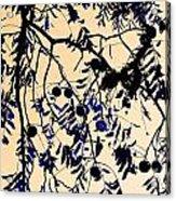 Blue Walnuts Acrylic Print