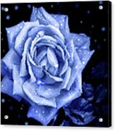 Blue Without You Acrylic Print